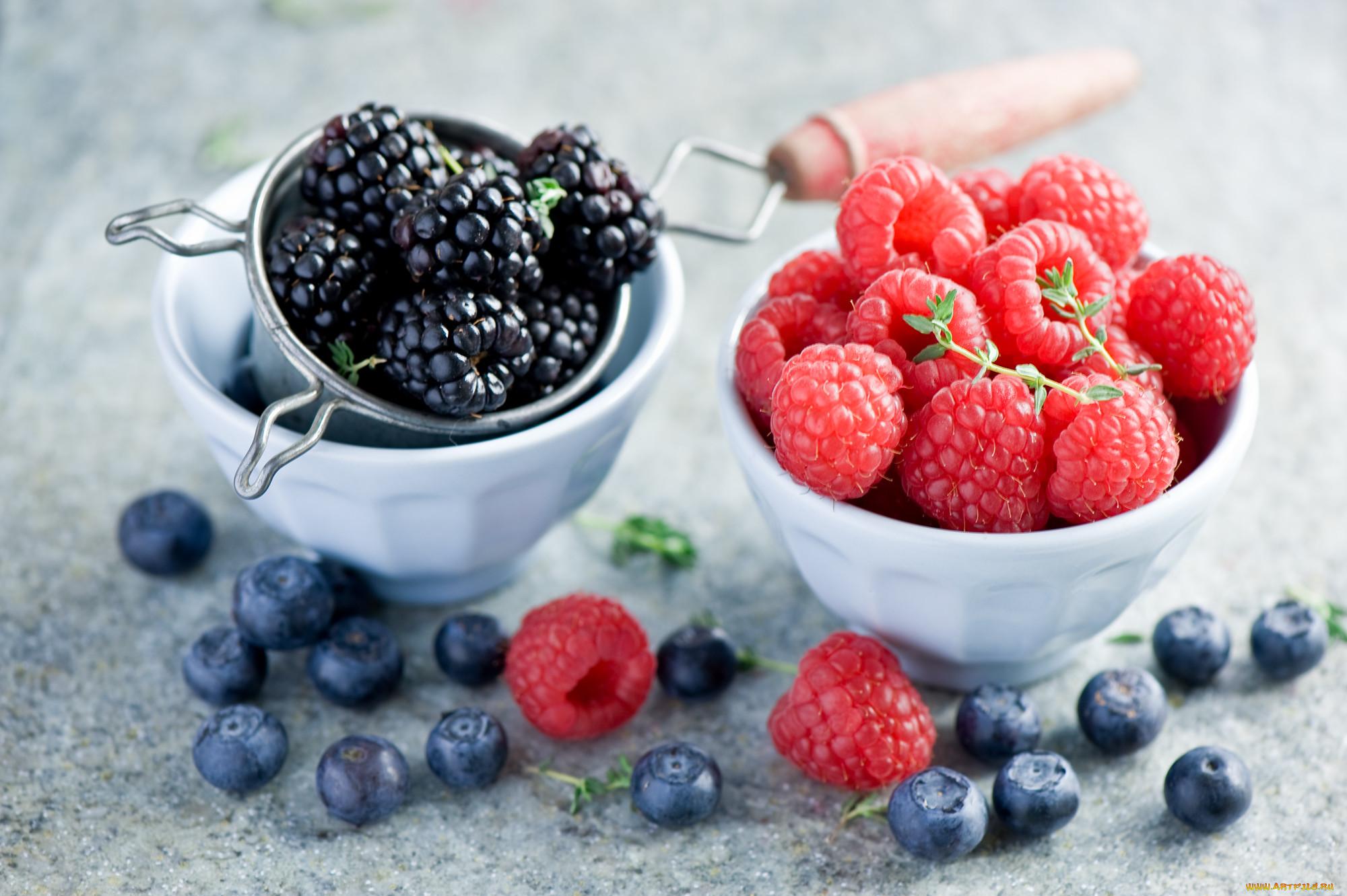 как фотографировать ягоды вида фотобумаги зависит